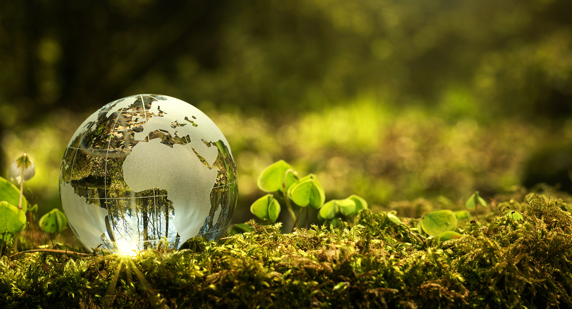 It's time to consider positive impact investing